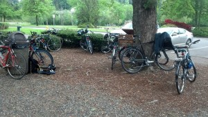 Bikes wait for their riders during the Interagency Bike to Work Day picnic.