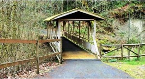 Olympic Disco Trail Bridge - cropped