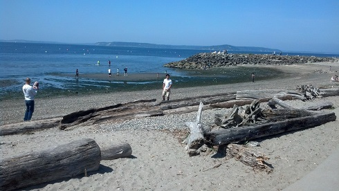 Olympic Beach, Edmonds.