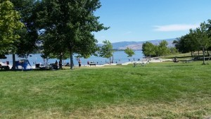 Confluence State Park, Wenatchee, WA -- a refreshing stop along the Apple Capital Loop Trail. With campgrounds, swimming in the Columbia River, play equipment for the little ones, and wonderful birdwatching, it's a great place to put on your list as you plan a bike trip to the Wenatchee Valley.