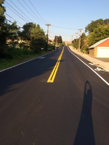 Bike Lanes on Devon Ave.