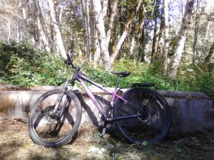 Ready to create adventure on the Whitehorse Trail.