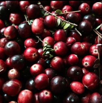Cranberries and other locally grown produce are at the farmers market.