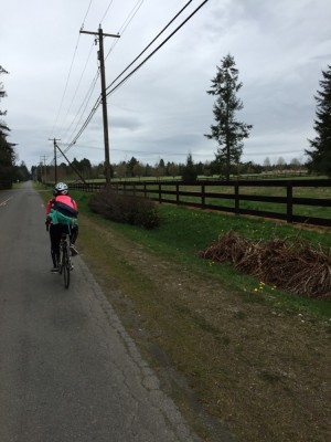 Bicycling past farm fences, Vashon Island, WA. David Killmon photo 2015