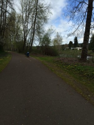 The cute Puyallup River Trail.