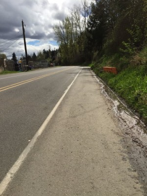 Valley Highway with great shoulder for bicycling. David Killmon photo 2015