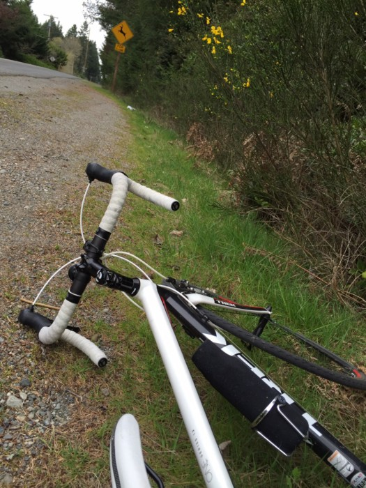 Bicycle lying on side of road, Vashon Island. David Killmon photo 2015