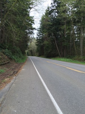 Vashon Island road leaving ferry landing. David Killmon photo 2015