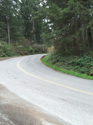Quiet rural roads for biking Vashon Island, WA. David Killmon photo 2015