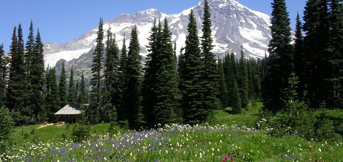 Mount Rainier - Indian Henrys