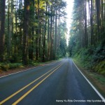 Everett-Mukilteo-Whidbey Island Century