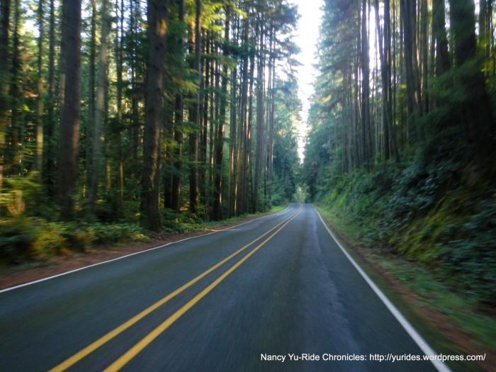 Ev-Muk-Whid road