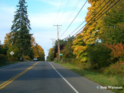 vashon_roads_color
