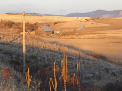 Quiet farm country in eastern WA. Randy Pulk pic.