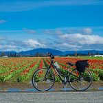 Skagit County, Stand Up May 24: Bike/Walk Projects Are Being Taken Away