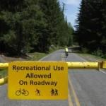 Biking at Mount Rainier