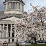 Washington Bikes racks up wins over the longest legislative session in state history