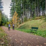 Washington Bikes Endorsements: Why The Eastside Needs Bike Friendly Leaders Now More Than Ever